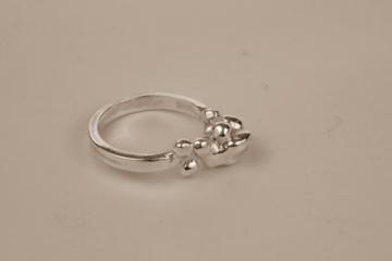 silver-fused-ring